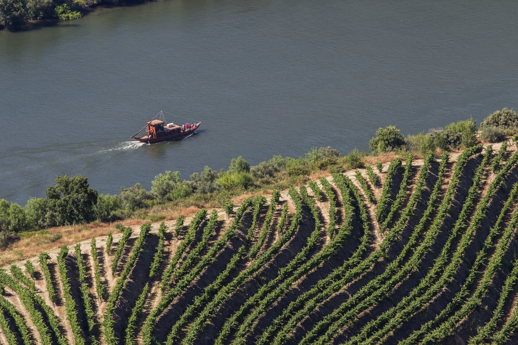 Douro Valley Tour on Boat