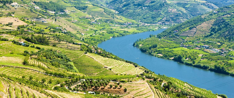 Circuito 2 dias: Porto e Douro Valley - Portugal