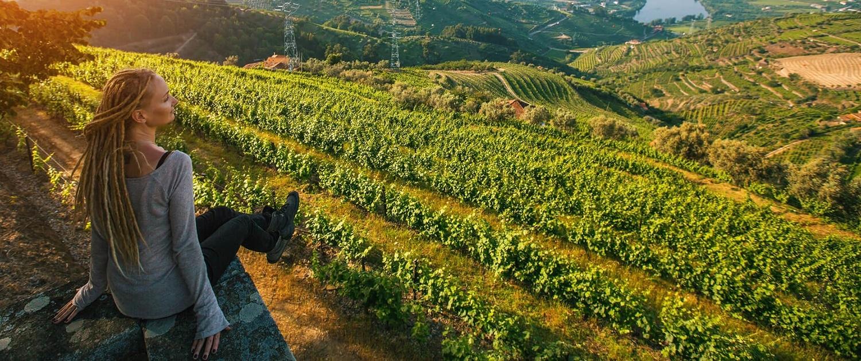 6 Days in Portugal: Porto Vineyard
